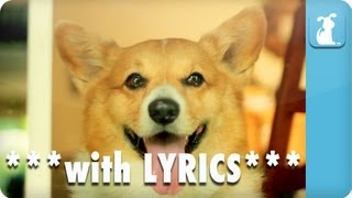 Carly Rae Jepsen - Call Me Maybe - Corgi Rae - Pet Parody **with Lyrics**