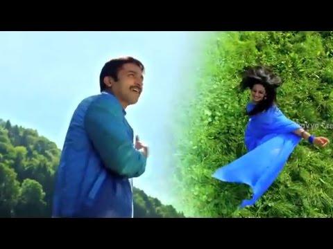 Loukyam Movie Ninnu Chudagane Song Trailer || Gopichand, Rakul Preet Singh || Sri Balaji Video
