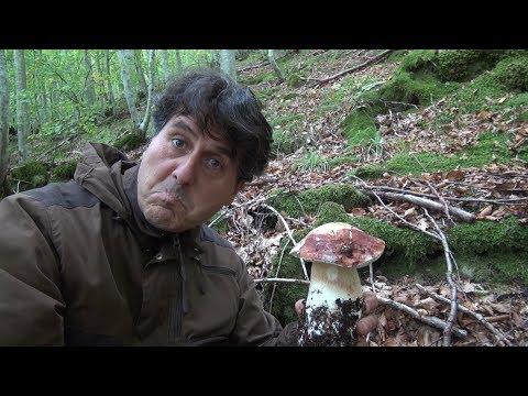 Come togliere unghie da un fungo