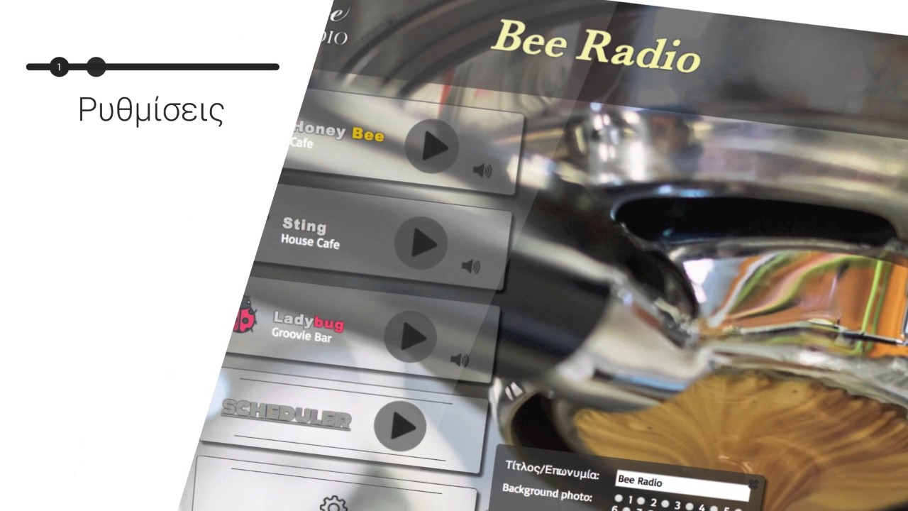 Bee Radio Features