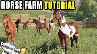 HOW TO: RAISE HORSES IN FARMING SIMULATOR 2019 | HORSE TUTORIAL