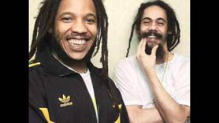 Damian And Stephen Marley- For The Babies
