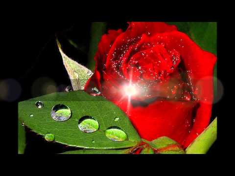 Клип на песню виталия аксенова мужское счастье