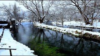 春を待つ安曇野 大王わさび農場・4K撮影