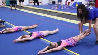 All About Kids Gymnastics