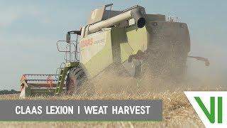 CLAAS Lexion 550 | Wheat harvest | Tarwe dorsen | 2018 | Blitterswijk Agro