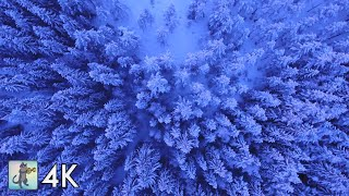 4K Amazing Nature Scenery   Drone Footage【Wonderful Planet Earth & The Beauty Of Nature】