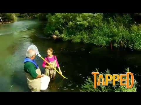 Tapped – Chemicals in the Water