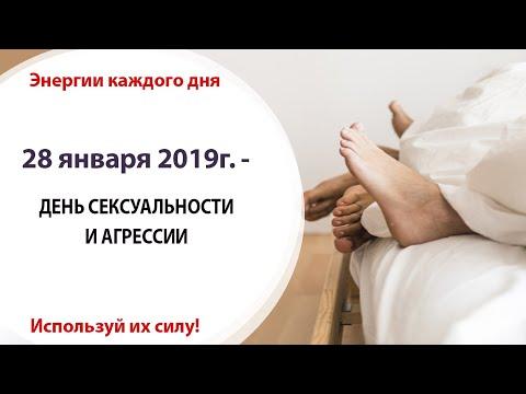 28 января (Пн) 2019г. - ДЕНЬ СЕКСУАЛЬНОСТИ И АГРЕССИИ