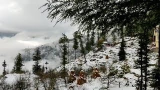 Himachal receives snow, more predicted for next two days