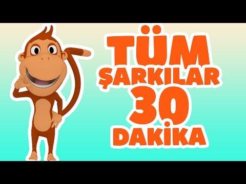 Kukuli - Tüm Çocuk Şarkıları | Tinky Minky ile 30 Dakika Çizgi Film & Bebek Şarkıları