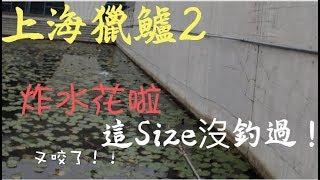 波爸釣魚趣-上海探點一日遊(海外/上海/路亞/鱸魚/Bass) (201811)