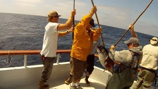Independence Sportfishing - 7 day - Sept 14-21,2013  Part 1 of 6 - Offshore Bluefin & Yellowfin