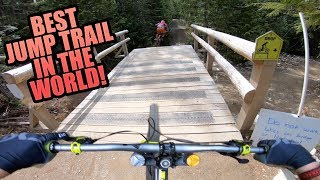 DIRT MERCHANT - WHISTLER BIKE PARK - BEST JUMP TRAIL EVER?
