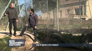 Rémy Et Ses Fauves 2011 D8