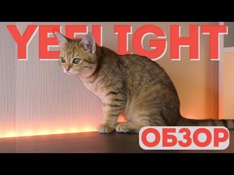 Обзор светодиодной ленты Yeelight Xiaomi LED Lightstrip Plus