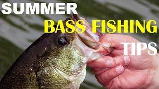 Summer Bass Fishing Tips | Bass Fishing