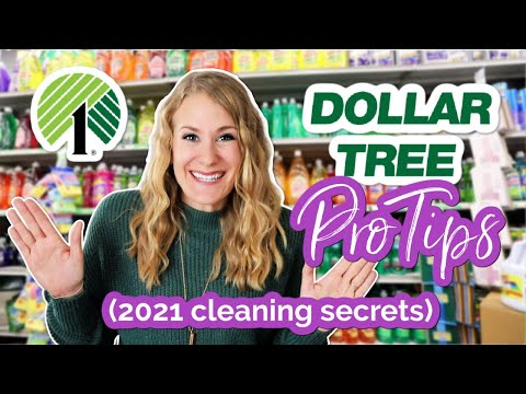 CLEAN YOUR *ENTIRE HOUSE* IN ONE TRIP TO DOLLAR TREE (best products for 2021 w/ @Do It On A Dime!)