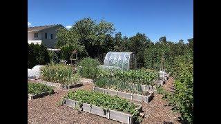 Everyone Can Grow A Garden (2018) #22 Preserving The Harvest
