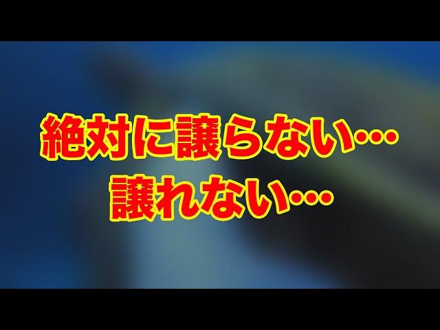 石垣島ダイビング|魚だから笑える熾烈な争い…|ビーチライフ石垣島