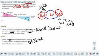 Eğitim Vadisi 11.Sınıf Biyoloji 11.Föy Dolaşım Sistemi 1 (Kan Damarlarının Yapısı) Konu Anlatım Videoları
