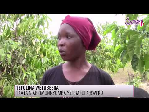 Baabano abasula ebweru lwa muggalo