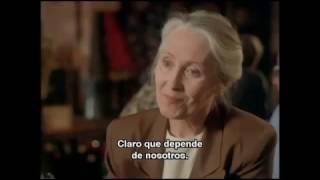 Nunca Me Olvides   Película Completa   Subtitulada Español