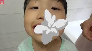 상어가족 상어 칫솔로 양치 했더니 꾸러기 미니 이 색깔 변했어요 ♡ 어린이 양치놀이 장난감 색깔놀이 핑거송 인기동요 learn colors   말이야와아이들 MariAndKids