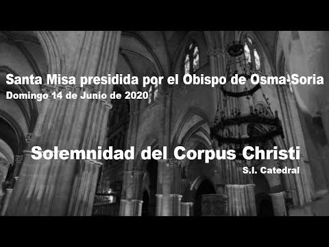 Retransmisión de la misa en la catedral burgense