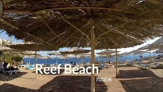 Египет-2017/ платный пляж возле отеля Sharming Inn Hotel 4*