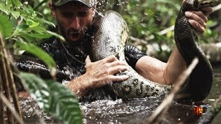 Eaten Alive Sneak Peek | Sun Dec 7 9/8c on Discovery