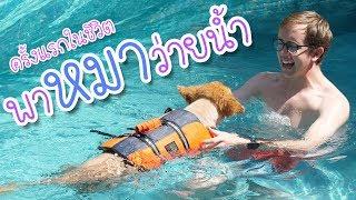 พาน้องหมาไปว่ายน้ำครั้งแรกในชีวิต!!!!