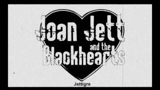 Joan Jett - FAKE FRIENDS ( 2010 )
