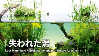 ADAVIEW: Seeking the origin of Nature Aquarium