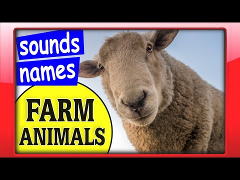 , title : 'Farm Animals Sounds and Names for Kids   Preschool Educational Video with Domestic Animals