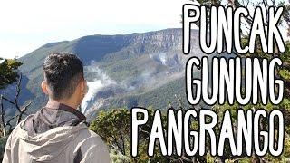 Pendakian Gunung Pangrango Cibodas