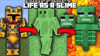 Minecraft LIFE AS A SLIME MOD / FIGHT AND SURVIVE THE PARKOUR RACE TO WIN AS A SLIME!! Minecraft