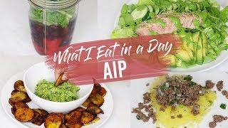 What I Eat In A Day AIP Meal Ideas