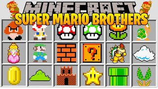 Minecraft SUPER MARIO BROTHERS MOD l TRAVEL TO MARIO DIMENSION AND FIGHT BOWSER! l Modded Mini-Game