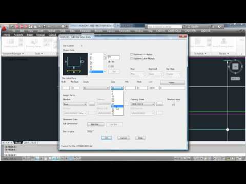 RC Demo - Managing Issues and Revisions