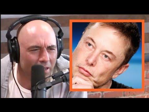 Joe Rogan - Elon Musk is an Animal!
