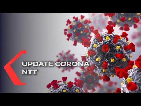 update corona ntt kamis kasus covid- terus meningkat tajam hari ini tambah kasus