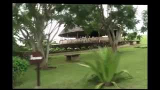 preview picture of video 'golfers paradise foumbot Cameroon'