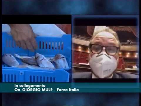 DIBATTITO ALLA CAMERA SUL DECRETO COVID, MULE' DI FORZA ITALIA CHIEDE PIU' AIUTI PER IMPRESE