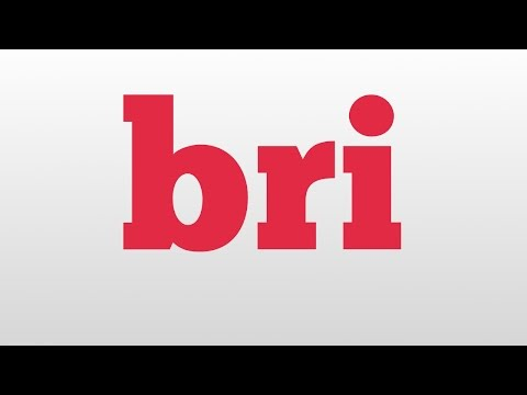 bri meaning and pronunciation