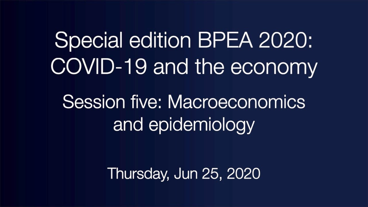 Session five: Macroeconomics and epidemiology