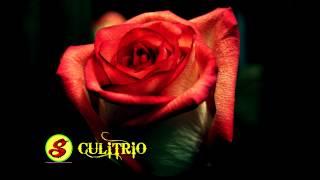 Grupo Mandingo- Puras Mentiras/ Grupos Romanticos Exitos' Gruperas AUDIO HD Only Mp3