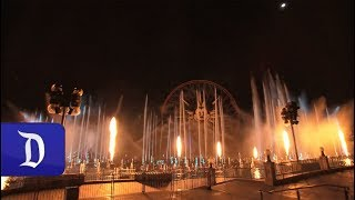 """""""Hurry Home""""  Year of the Dog 