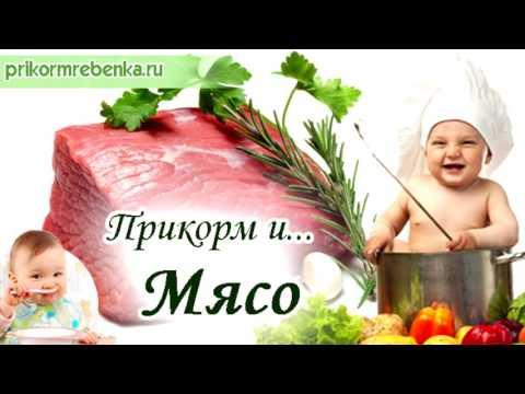 Мясной прикорм ребенка – сколько можно давать, какое мясо и когда вводить, как приготовить