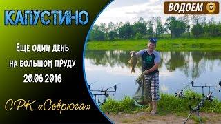 Платная рыбалка в чехове